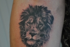 Tatouage animal